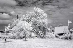 Infrared 850nm Converted Refurbished Canon 1100D (X50, Rebel T3) For Black And White Photography