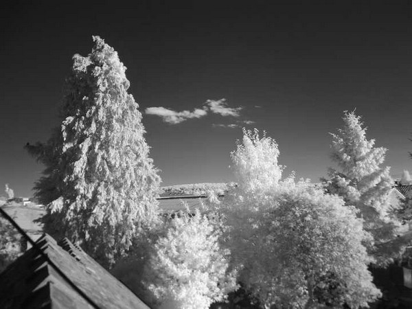 infrared 850nm pic